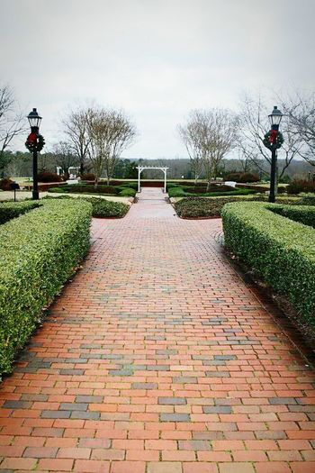 Sky The Way Forward Outdoors No People Nature From My Point Of View Mothernature Path Pathway Forced Perspective Symmetry Brick Road Beautiful
