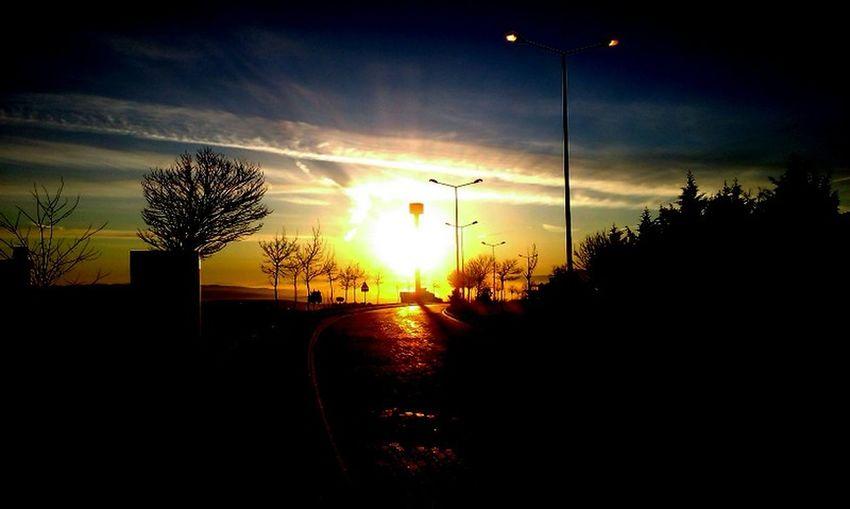 #blue- #Bright #sky #Sunrise #sunshine #TURKEY/Kocaeli #yellow #flowers Urban