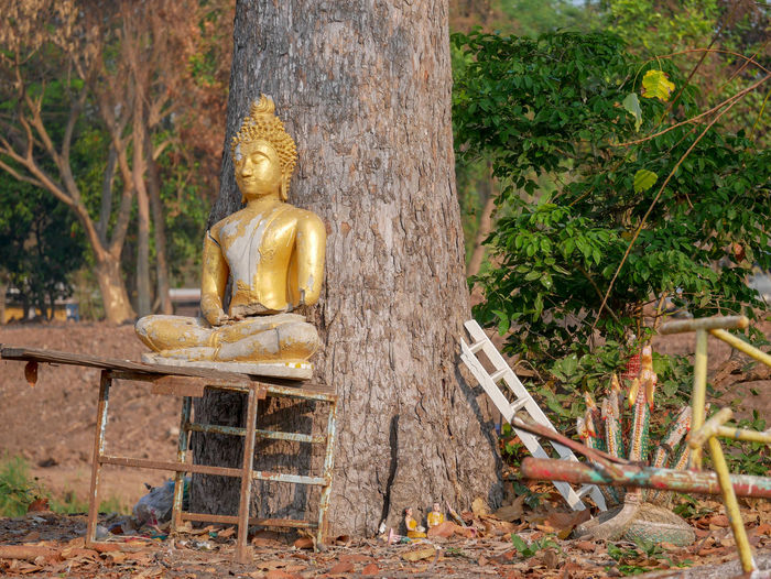 Statue of buddha sitting against trees