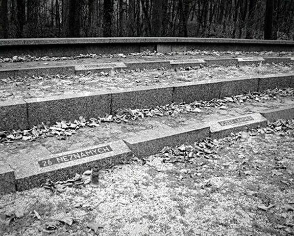 26 Unknown Slovensko Cemetery Cementery Cementerio Brezina Trees Blackandwhite Memorial Partizan