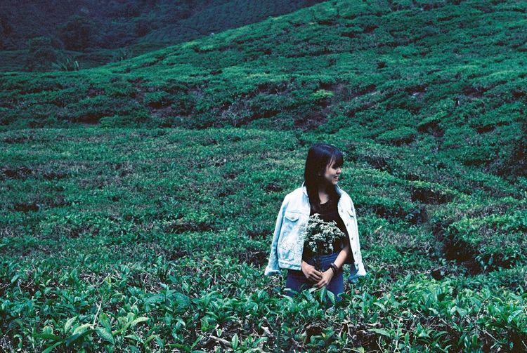 35mm Film Fujicast801 No Filter Kodakektar100 Kodak