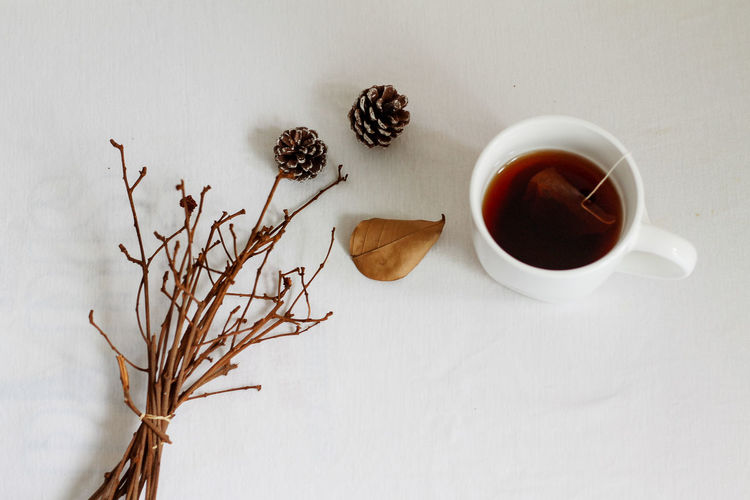 tea time to keep warm Styled Stock Photos Styled Stock Photography Flat Lay Winter Winter Layout Winter Theme Autumn Theme Minimalism White Background No People Layout Acorn Autumn Layout Copy Space Space For Text Leisure Activity Drink Tea - Hot Drink Table Coffee Cup Close-up Food And Drink Black Tea Teabag Tea Afternoon Tea Tea Cup Hot Drink Scone Autumn Mood