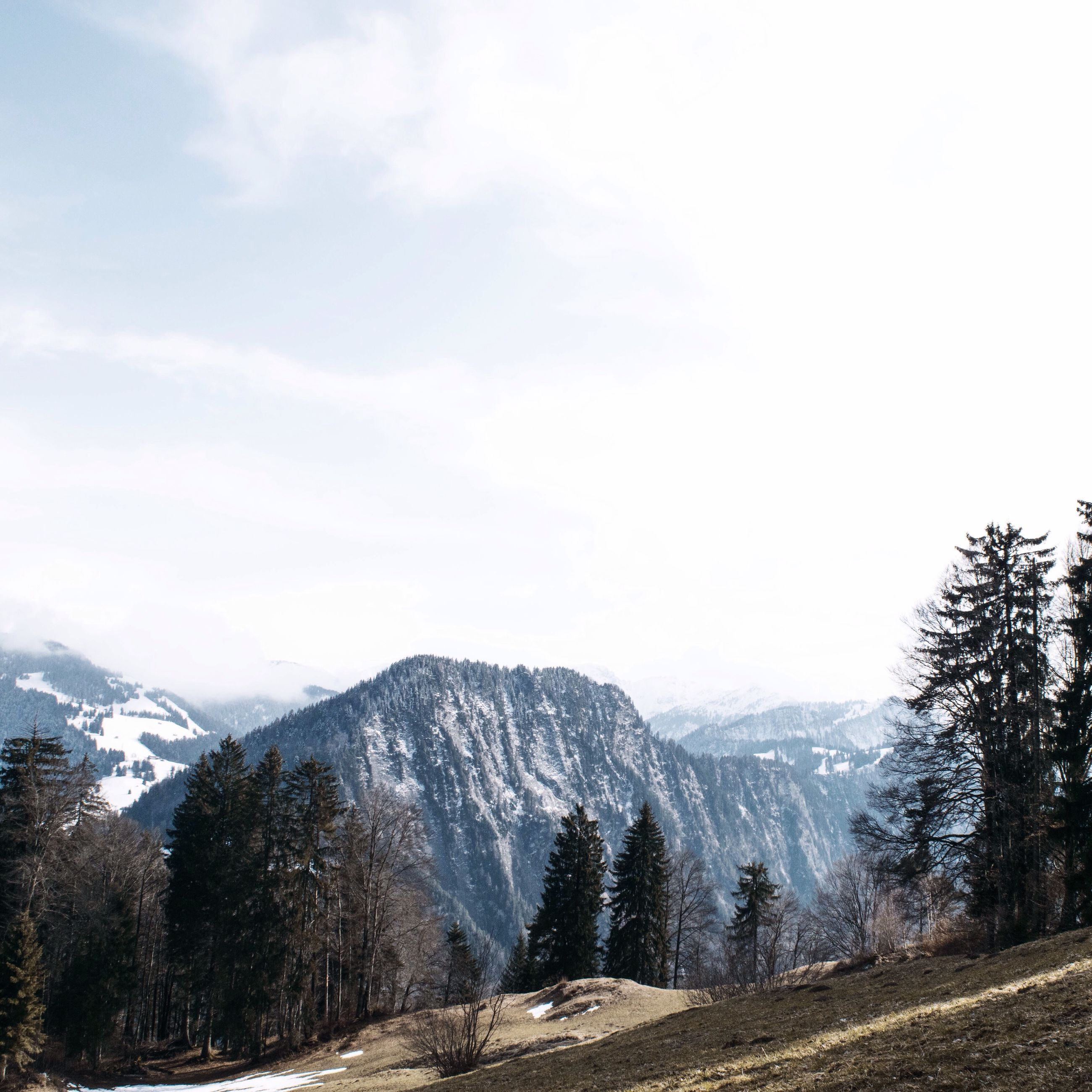 mountain, tranquil scene, tranquility, scenics, mountain range, beauty in nature, landscape, sky, nature, non-urban scene, tree, remote, idyllic, day, outdoors, non urban scene, physical geography, rock - object, no people, cloud - sky