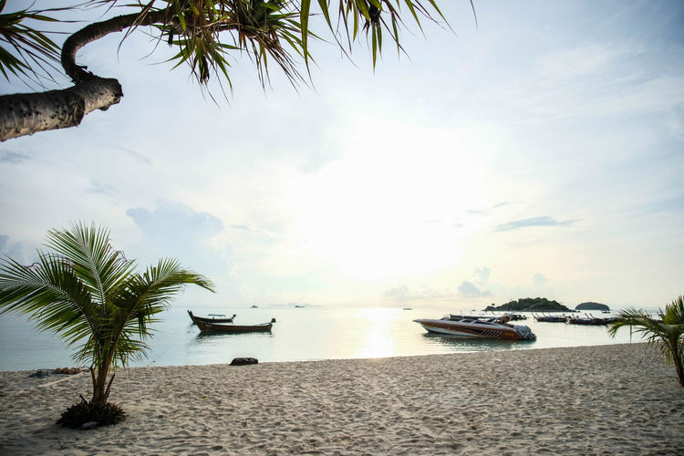 Satun, Thailand - May 7, 2017 : The beach wide view with trees, boats, blue sky and sea Beautiful Beautiful Nature Freshness Morning Nature Reflection Scenery Shots Sunlight Travel View Beach Landscape Relaxation Sand Scenics Summer Tropical Vacation