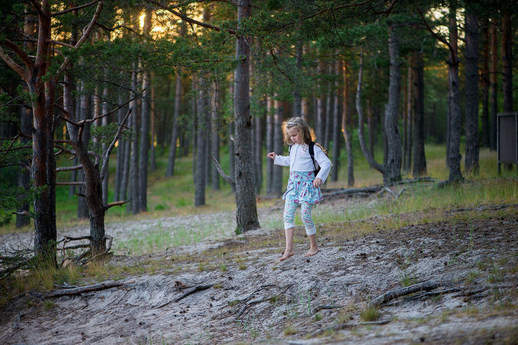 A little girl with a red backpack going through the forest path Backpacking Adult Backpack Child Childhood Children Only Day Forest Forest Trail Full Length Happiness Kid Little Girl Nature One Girl Only One Person Outdoors People Portrait School Children Smiling Standing Tourism Trail Tree