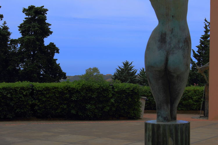 Blue Sky Day Museo Archeologico Regionale Di Agrigento Nature No People Outdoors Scenics Sculpture Sky Tree