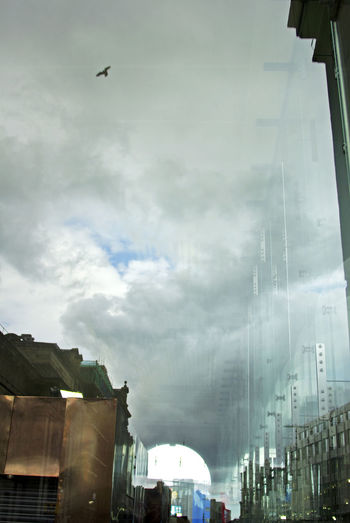reflection in the city. Architecture Building Building Exterior Built Structure City City Life Cloud Cloud - Sky Cloudy Day Flying High, Bird, Reflection, Grey Day Low Angle View Modern No People Outdoors Overcast Sky Tall - High Weather