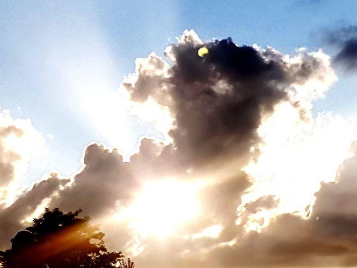 Sunlight Blue
