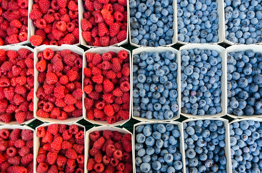 Raspberries and Blueberries. Berries Divided Raspberries Rubus Taste Of Summer  Vaccinium Corymbosum Arrangement Backgrounds Berries Collection Blue Blueberries Blueberry Flavor Freshness Fruits Full Frame Indigo Juicy Mouthwatering Raspberry Red Red And Blue Summer Tantalize Your Tastebuds Tantalizing Mix Yourself A Good Time The Week On EyeEm Your Ticket To Europe Modern Love