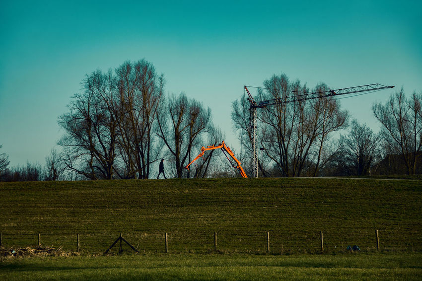 #kaiserswerthmeadows06 Bare Tree Crane - Construction Machinery Dike Environment Field Grass Landscape Nature No People Outdoors Plant Scenics - Nature Sky Tranquility Tree