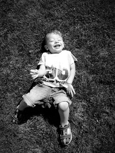 Child Laughter Play Grass Smile Childhood Innocence Toddler  Nephiew Ferma Animalelor