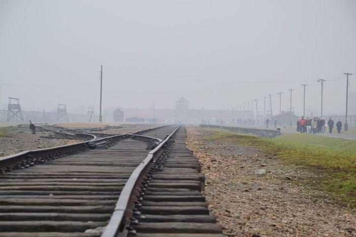 Concentrationcamp Sadness History Historic Places Auschwitz  Death Last Journey Fog Poland