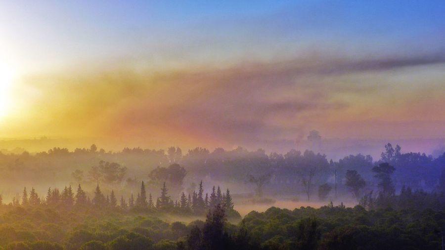 Dreamland Dreamworld Pastel Power Marocco Maroc Marokko Foggy Morning Colorful Colorful Moments