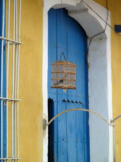 Doors: Cuba Architecture Blue Building Exterior Built Structure Close-up Day Door House No People Outdoors Window