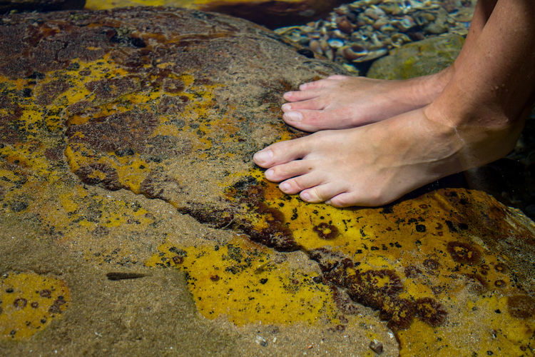 Close-up of human hand on rock