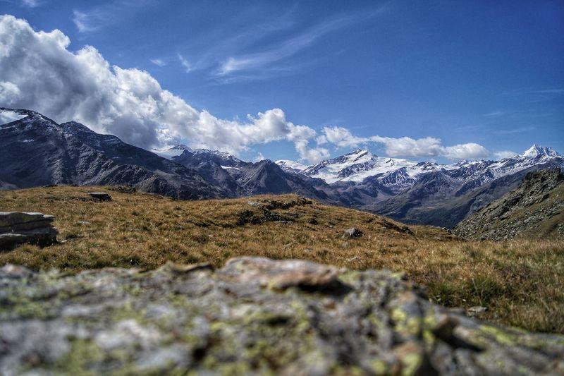 Alpine Clear