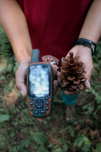 Midsection of man holding mobile phone and pine cone