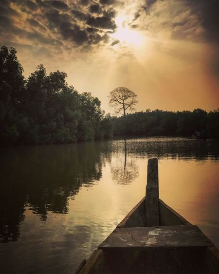 Early morning canoe ride Thelongwayround Mangrove Butre Ghana Tree Water Reflection Sky An Eye For Travel An Eye For Travel