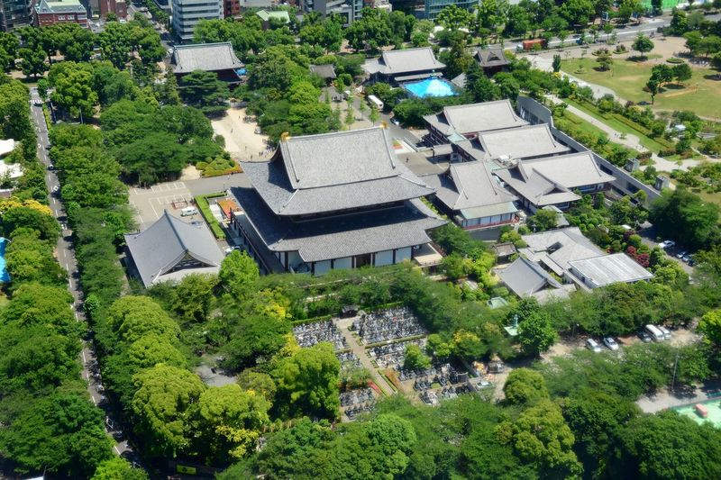 Japanese Temple Observation From Tokyo Tower Tokyo,Japan Aerial View Building Exterior City Day High Angle View Scenics Tokyo Photography Tree