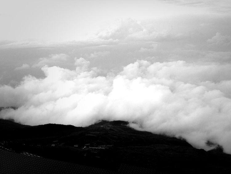 Cloud Sea (雲海)