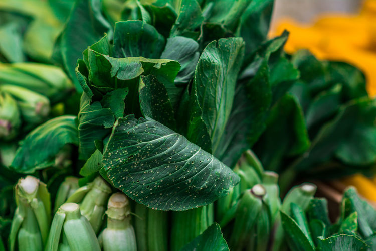 Close-Up Of Bok Choys For Sale At Market