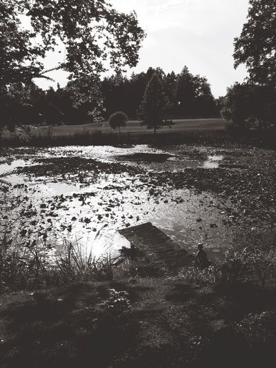 Nature Pond Photography Blackandwhite First Eyeem Photo