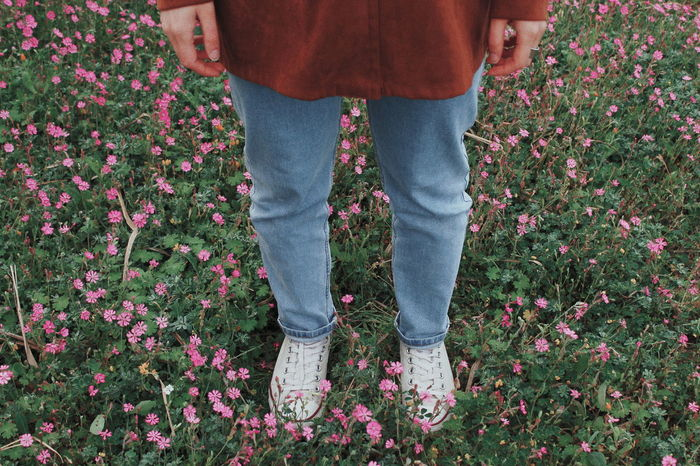 #jeans EyeEm Selects #Blue #Legs Green Color Green Flower Flowers Plant Plants Shoes Girl Pink Converse Converse All Star
