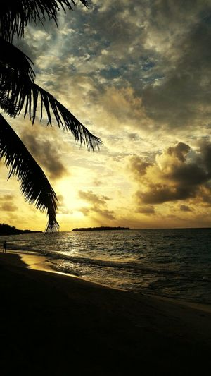 Maldivler Sea Sunset Beach Nature Silhouette Water Horizon Over Water Reflection Beauty In Nature Scenics Cloud - Sky Sky Tranquil Scene Tranquility No People Sand Outdoors Travel Destinations Vacations Landscape