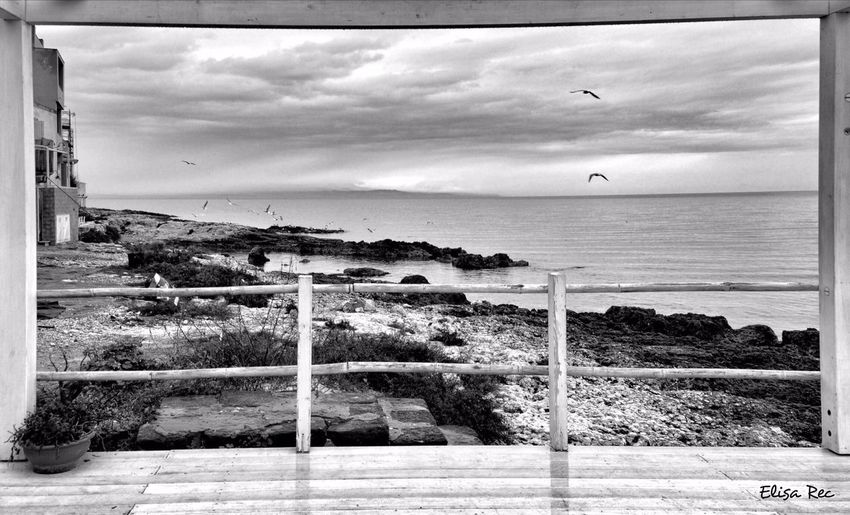 Brucoli, Augusta, Sicily Blackandwhite Sicily Black And White Black & White Blackandwhite Photography Black&white Biancoenero Panorama Gabbiano Bird Birds Seagulls Seagulls And Sea Sicilia Italy Italia