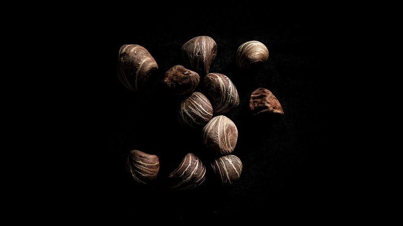 Chestnut 2.0 Mobilephotography Sony Xperia Xz Takenwithxperia Shotbyxperia Itsme_itsXperia Manual Black Background Unpolished Contrast Art Black Cloth Chestnut Nut Clouse-up Close Up Snapseed Processed