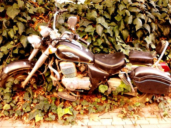 Motorbike Old Motorbike Nice Bike Black And Gold Nature_collection Natural Old Bike Old