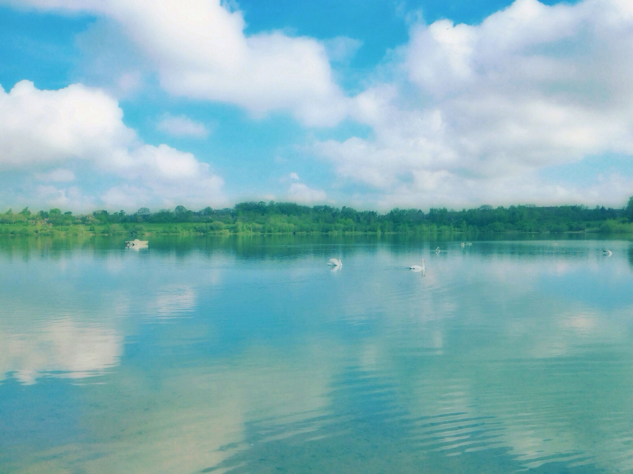 water, sky, tranquil scene, tranquility, cloud - sky, scenics, lake, beauty in nature, waterfront, reflection, nature, cloud, cloudy, blue, idyllic, rippled, tree, non-urban scene, day, outdoors