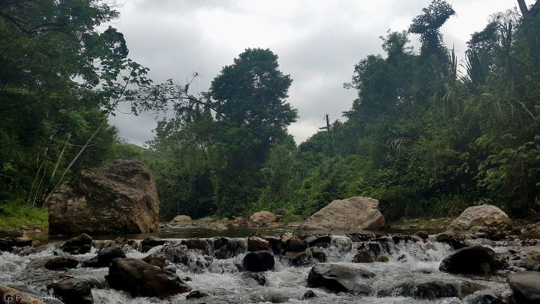 Honduras El Castaño Naturaleza Samsung Galaxy S5 Percepolis12 Fotografia Beautiful Nature River View Landscape Photography