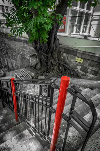 Architecture Built Structure Red Day No People Metal Isolated Color Staircase City High Angle View Tree Stairs Stairway Trees HongKong Hong Kong Street Streetphotography Street Photography Red Color Green Color Urban Urban Geometry Wall Wall - Building Feature Streetart