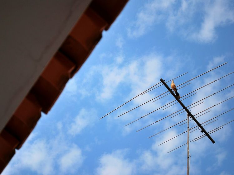 Low Angle View Sky Blue Composition Compositing Bluesky Clouds Clouds And Sky Cloudy Sky Roof Antenna Broken Patterns Outdoors Outside Sunday Sky Sunday EyeEm Best Shots EyeEm Gallery EyeEm Best Pics Cool Just Taking Pictures Bird Photo Art Photography Photooftheday