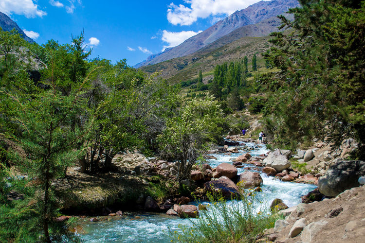 Adventure Beach Beauty In Nature Chile Day Landscape Landscape_Collection Nature No People Outdoors Sky Summer Tourism Tree Vacations