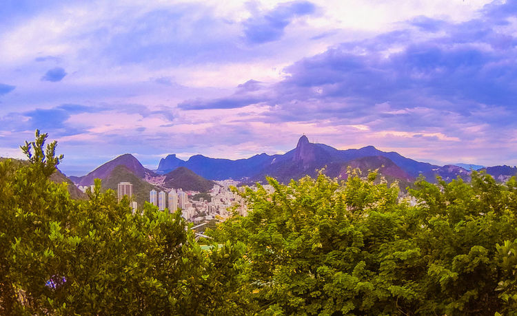 All and bit more about Rio de Janeiro Architecture Brazil Chinese View Holiday Rio De Janeiro Rio De Janeiro Eyeem Fotos Collection⛵ Sunset_collection Travel Vista Chinesa Beauty In Nature Day Flower Mountain Mountain Range Nature No People Outdoors Range Rio De Janeiro, Brazil Scenics Sky Sugarloaf Sunrise Sunset Tranquility Travel Destinations Tree Yellow Taxi