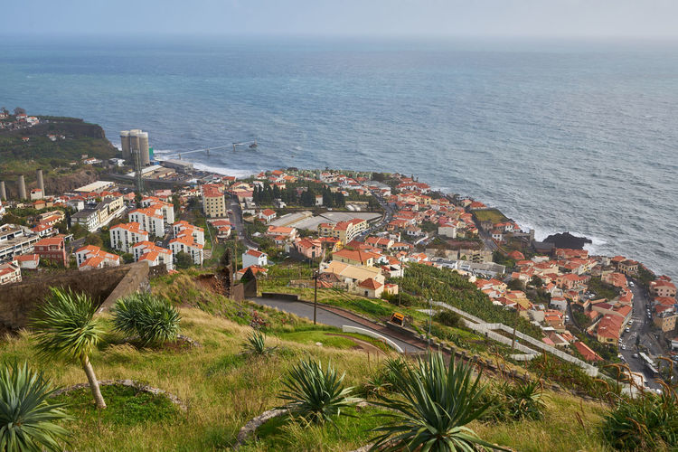 View of Miradouro da Torre viewpoint of the atlantic coastline with cactus in Câmara de Lobos, Madeira Atlantic Cactus City Cityscape Madeira Panorama Portugal Portuguese Travel View Aerial Aerial View Architecture Buildings Camara De Lobos Ilha Island Landscape Miradouro Nature Ocean Outdoors Plant Seascape Viewpoint