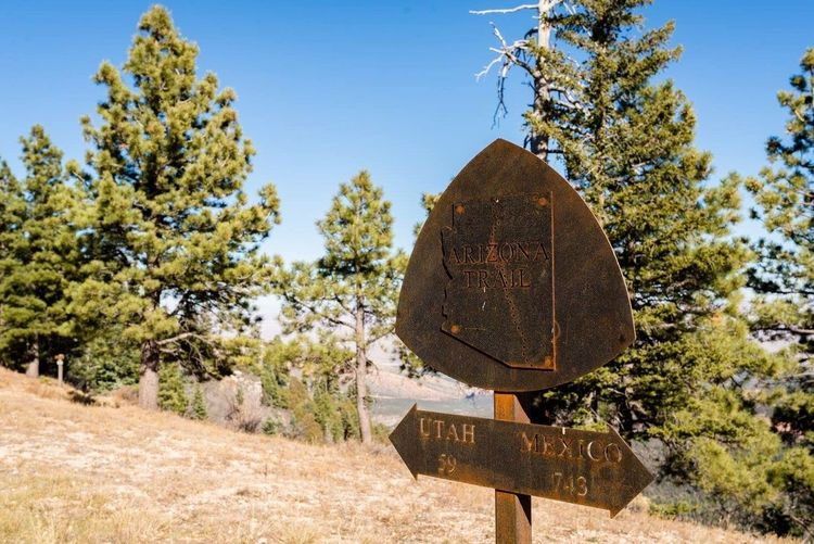 Second Acts Backpacking Tree Day Communication Outdoors No People Hikingadventures Travel Destinations Nature Rogue Road Sign Close-up Nature