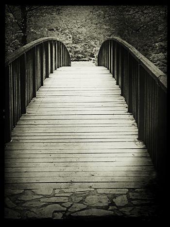 Bridge Nice Views Walking Enjoying The Sights Relaxing On A Hike Blackandwhite Black And White Black & White