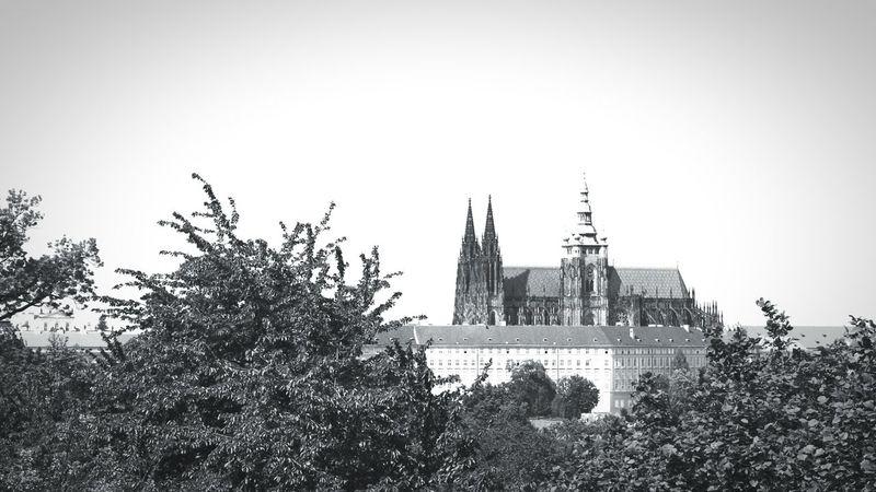 Castle View  Blackandwhite Horizon