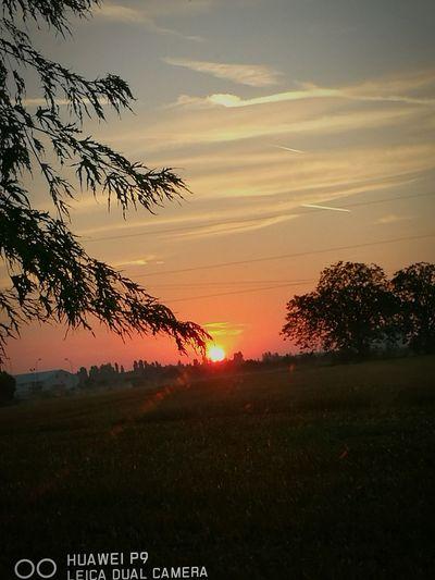 Good morning Outdoors Sun Beauty In Nature Idyllic First Eyeem Photo