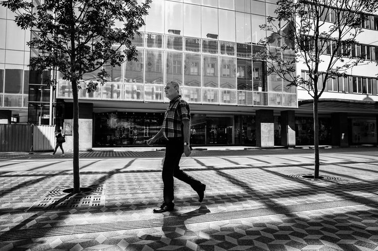 A man in plaid shirt walks on a cobbled street covered with a grid of shadows caused by a light reflecting from a building.. Ljubljana, Slovenia. Black & White Grid Light And Shadow Ljubljana Slovenia Streetphotography The Street Photographer - 2016 EyeEm Awards Trees