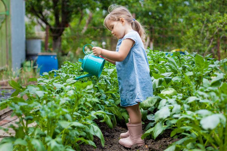 Full length of girl holding plants