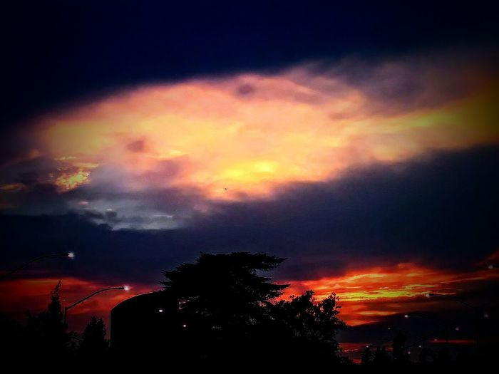 Silhouette Night Dramatic Sky Sunset No People Sky Beauty In Nature Outdoors Scenics Tranquil Scene Tranquility Nature Tree Astronomy Northern California Cloud - Sky Silhouette New Beginnings Keep Faith City New Day Tree Car Orange Color Growth The Week On EyeEm