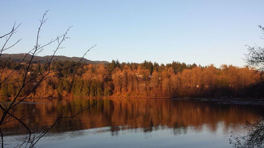 Autumn Colors Beautifulbc Eye Em Landscape-Collection Nofilter