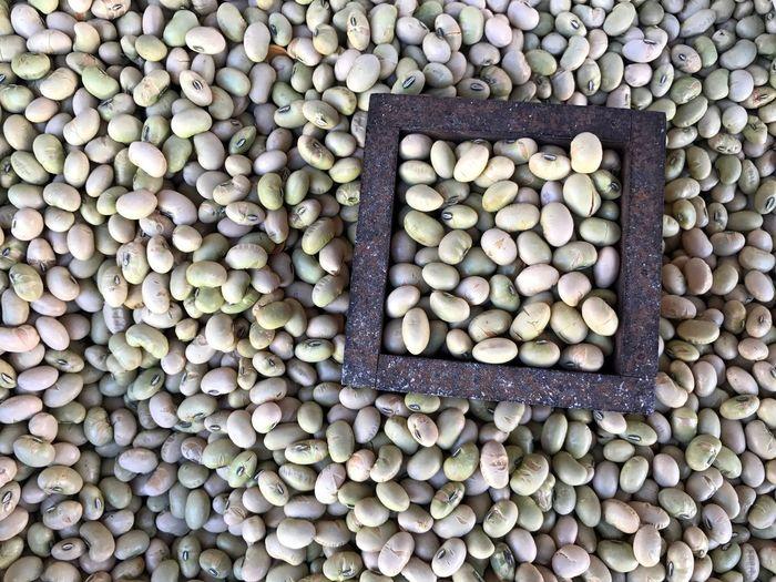 豆 節分 Setsubun Japan Japanese Culture Tokyo Beans