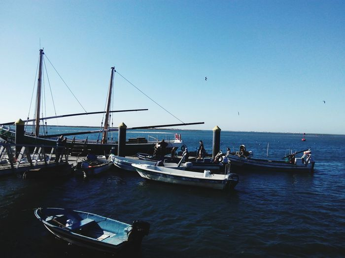 Olhao Sea Side Seafoods Nautical Vessel Transportation Mode Of Transport Moored Outdoors Water Blue No People Harbor Shipping  Astrology Sign Sea Day Sky Nature Seascape Photography Season  Sea_collection Sea Life Season  Season  Season
