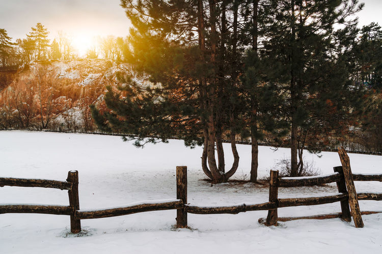 Snow Cold Temperature Winter Tree Tranquility Beauty In Nature Plant Tranquil Scene Nature Scenics - Nature Land Covering Non-urban Scene Field Barrier Boundary Fence No People Sky Outdoors