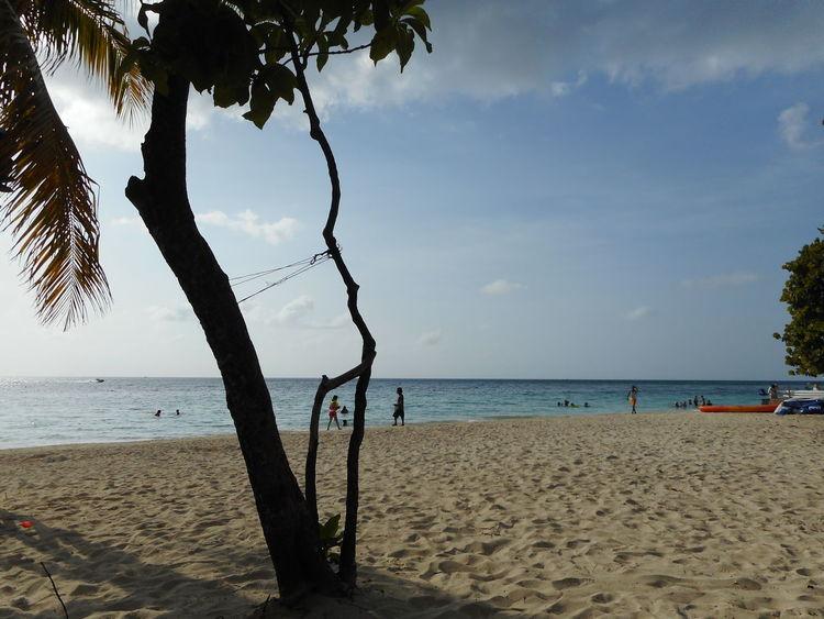 Honduras Roatan Bay Islands Beach Beauty In Nature Day Horizon Over Water Nature No People Outdoors Sand Scenics Sea Shore Sky Tranquil Scene Tranquility Tree Water